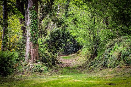 Le jumelage avec castleisland - Office tourisme killarney ...
